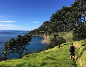 Everything you need to know about summer hiking in New Zealand